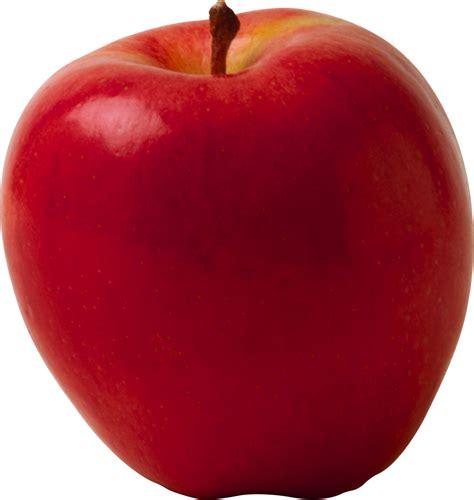 apple wallpaper transparent apple fruit png transparent apple fruit png images pluspng