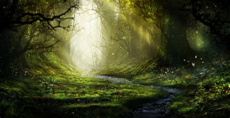 enchanted forest by aeflus on deviantart