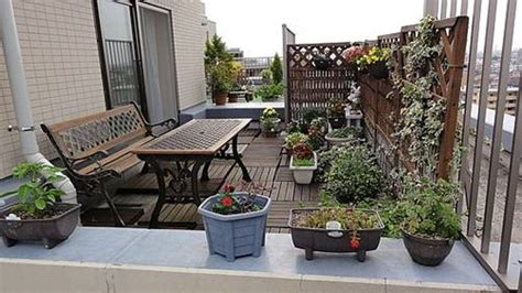 rooftop plants rooftop terrace gardens the best way to incorporate