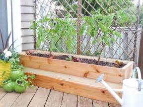 Planter Box Deck by Deck Decorating Idea With Raised Flower Box Planter