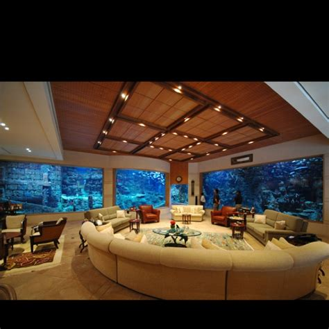basement with aquarium walls my life does not fit easily