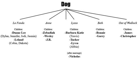 the bounty family the bounty family tree breeds picture