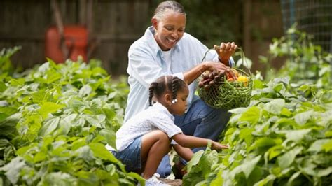 family gardening get on the farm san diego farm tour day is september