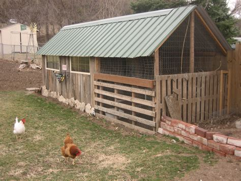 the chicken house chickens happy homemaker ph d