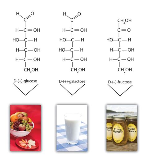 name 3 carbohydrates 14 4 cyclic structures of monosaccharides chemwiki