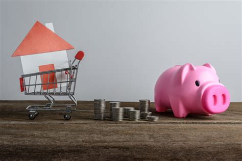 pig shopping for house citywide home loans