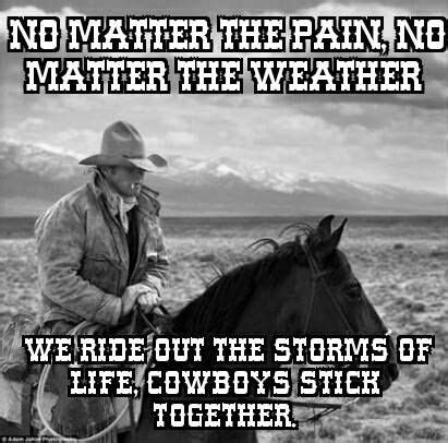 2955 best images about cowboys have always been my heroes 2955 best images about cowboys have always been my heroes