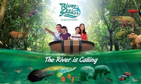 Promo Tiket River Safari Singapore Dewasa river safari singapore zoo 50 tickets sg50 promo 1 31 aug 2015