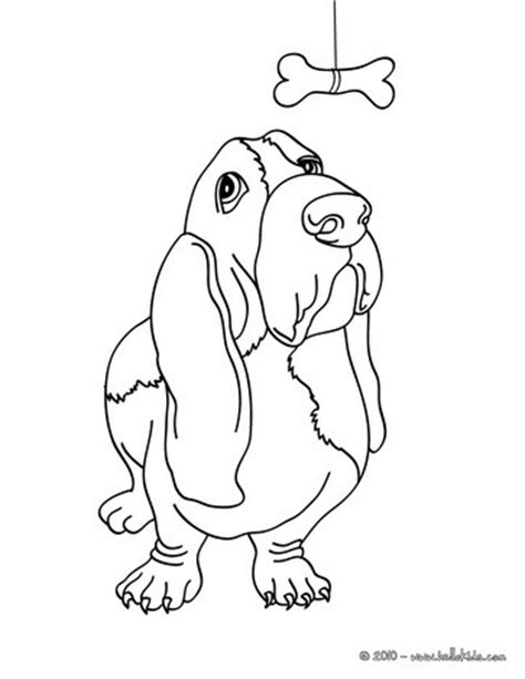 basset dog coloring pages hellokids com