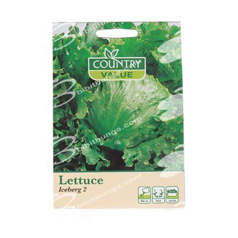 Benih Selada Lettuce Gem Mrfothergills Kemasan Asli benih lettuce iceberg 4 1000 biji johnson seeds