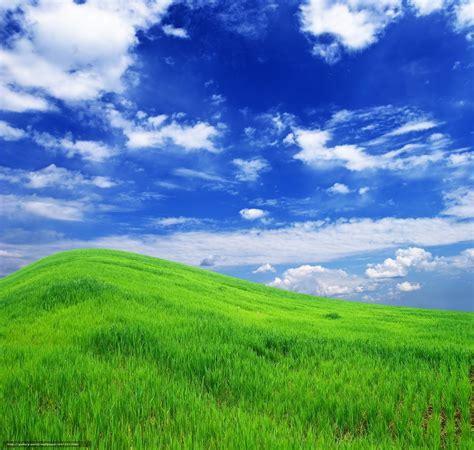 wallpaper field grass hill  desktop