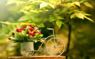 wallpaper with flowers beautiful flower wallpapers for you vase of flowers wallpaper