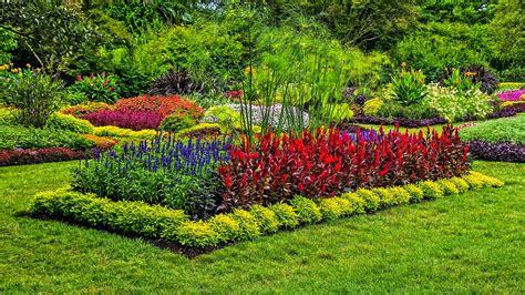 imagenes regando jardines im 225 genes de jardines muy coloridos fotos e im 225 genes en