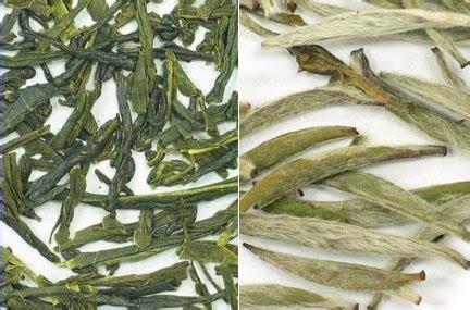 Teh Hijau Dan Teh Hitam teh putih ajaib untuk kesehatan dan kecantikan perbedaan antara teh hitam teh hijau teh