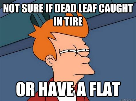 Tire Meme - not sure if dead leaf caught in tire or have a flat