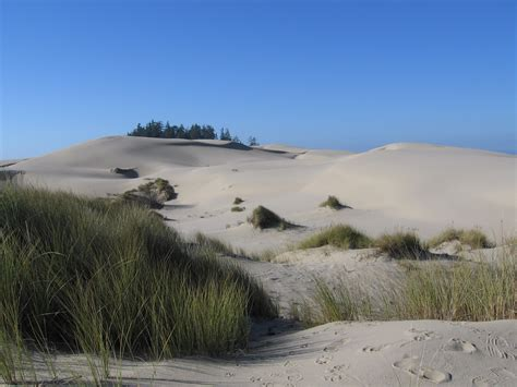 file usa oregon dunes jpg wikimedia commons