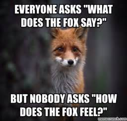 What Does The Fox Say Meme - what does the fox say meme car interior design