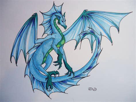 drawn dragon water dragon pencil and in color drawn