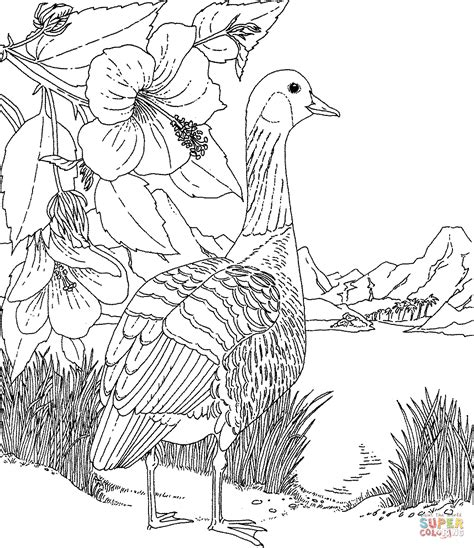 hawaiian birds coloring pages nene and hibiscus hawaii state bird and flower coloring