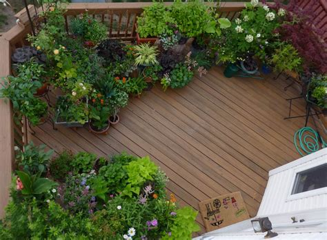 A Garden by Reader Photo All The Joys Of A Garden On A Deck
