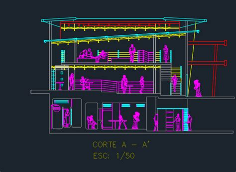 levels cafeteria  cuts  dwg design elevation