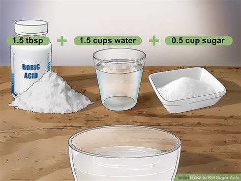 sugar ants bathroom sugar ants bathroom how to get rid of sugar ants in the