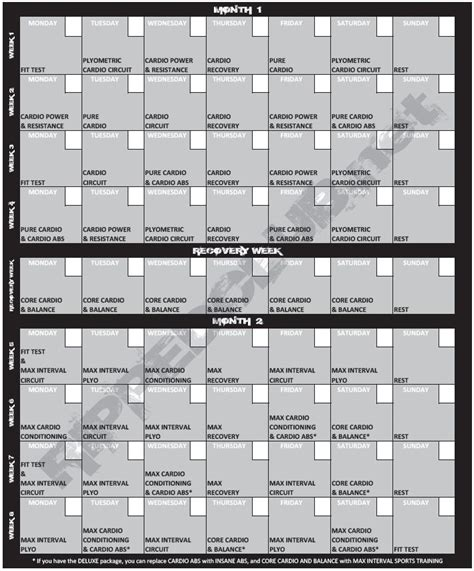 printable version of insanity workout calendar 25 best ideas about insanity workout schedule on