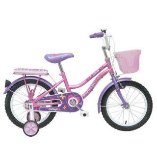 Sepeda Anak Mini Beautiful Ukuran 16 Warna Ungu ini dia 8 sepeda anak roda 2 yang layak jadi idaman si buah hati 2018