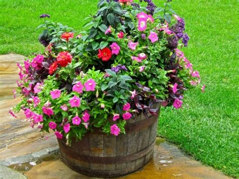 wine barrel planter ideas madly whimsical wine barrel planter ideas inhabit zone