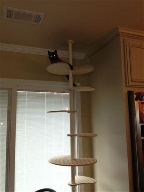 modern cat tree ikea diy cat trees using ikea stolmen components contempocat