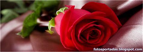 imagenes de rosas blancas para portada de facebook im genes de rosas blancas para perfil de facebook imagenes