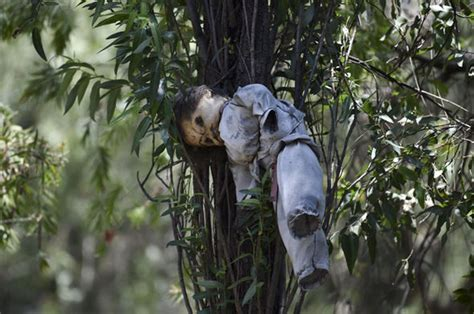 haunted doll forest in mexico step foot inside this haunted forest and you might not