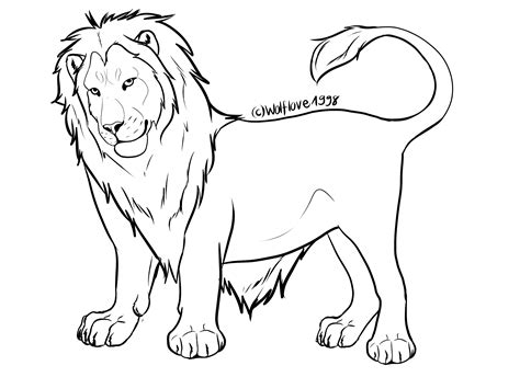 male lion coloring pages related keywords suggestions for lion line art drawings
