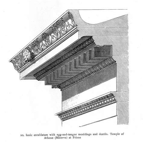 Cornice Support Cornice Temple Of Athena Priene Illustration Ancient