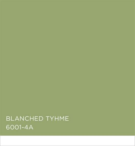 valspar blanched thyme colors in focus green