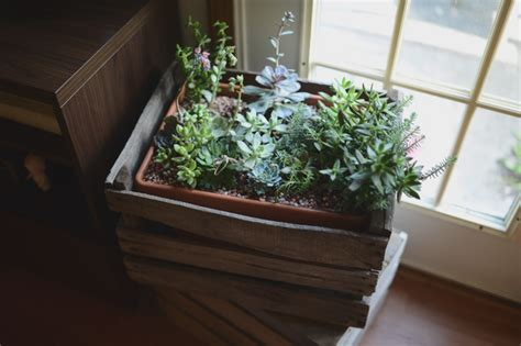 Wooden Crate Planters by Diy Masculine Decor Idea Use Vintage Wooden Crates As