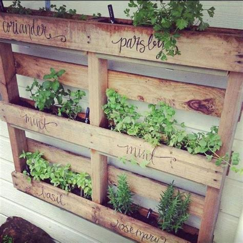 herbs on wall herb wall pallet garden for the backyard pinterest