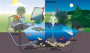 Small Water Pump For Pond The Comprehensive Guide To Selecting The Right Solar Pond
