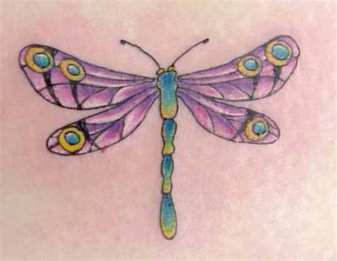 free dragonfly tattoo designs dragonfly pictures free design