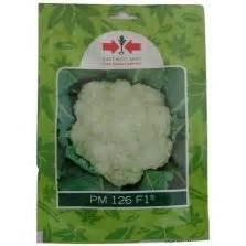Benih Pepaya California Raja Seed 1 Pack jual benih terong yumi f1 400 biji harga murah panah merah