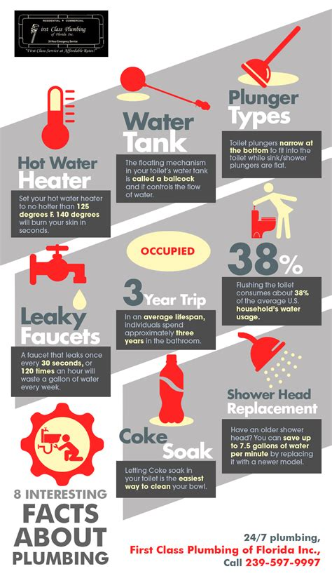 Facts About Plumbing by 8 Interesting Facts About Plumbing Shared Info Graphics