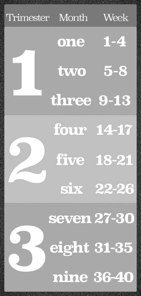 A greytone chart with first trimester, second trimester