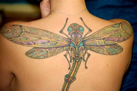 dragonfly tattoo meaning dragonfly tattoos meaning tattoosphoto