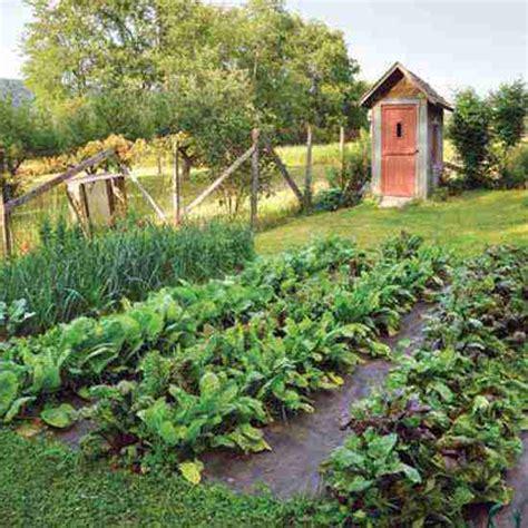 How To Start An Organic Vegetable Garden Top Organic Vegetable Gardening Challenges And How To