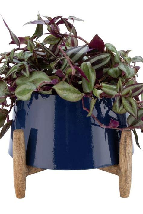 indoor plant pot stands planter  legs standing