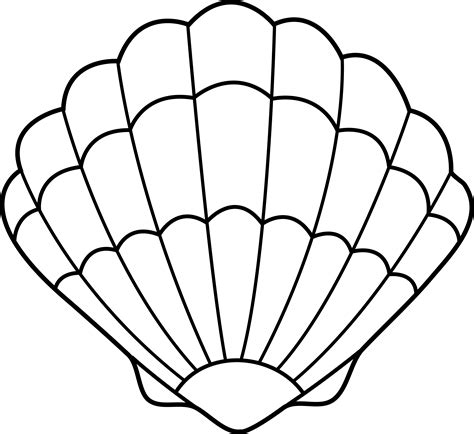 Seashell Coloring Pages seashell lineart free clip
