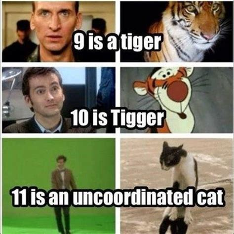 Doctor Who Cat Meme - doctor who memes wholock pinterest a tiger dr who
