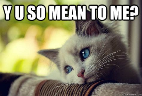Mean Kitty Meme - y u so mean to me first world cat problems quickmeme