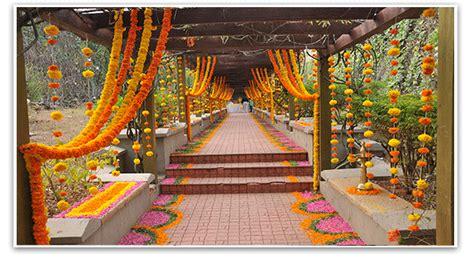 fresh marigold flowers export aptso exports