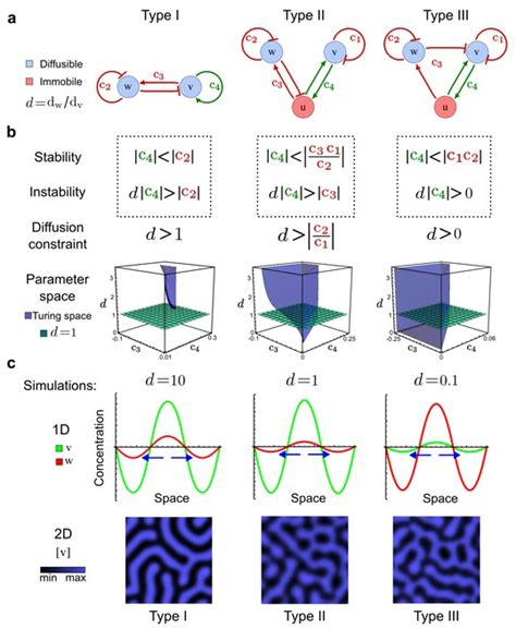 pattern formation mechanisms in reaction diffusion systems high throughput mathematical analysis identifies turing